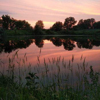 Farm pond fishing in Bendena