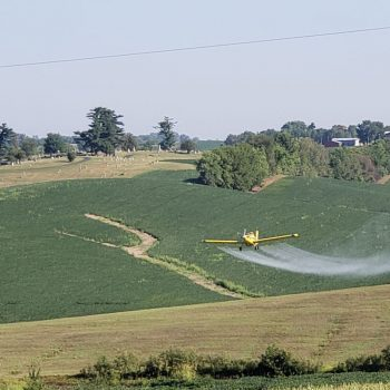 Crop Dusting near Wathena Pool